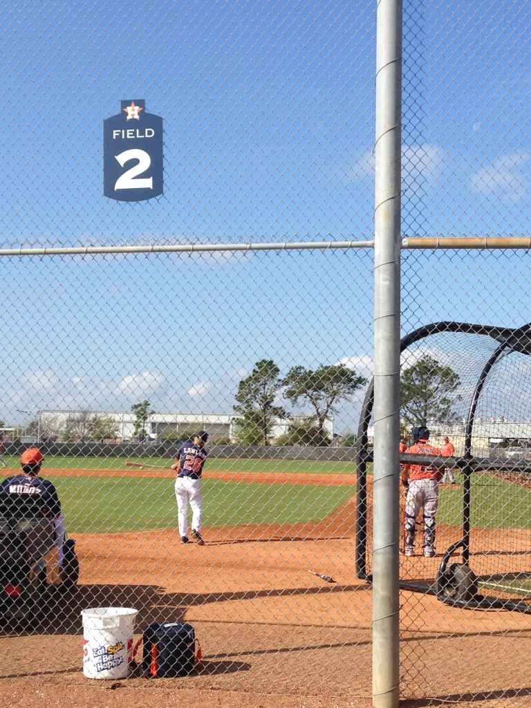 Tom Lawless hits fungoes during a minor league workout.